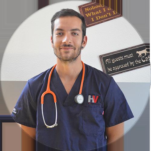 Dr. Bruno Melo